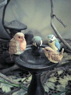 我が家の野鳥達