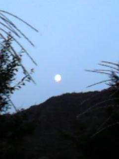 芦安のお月見